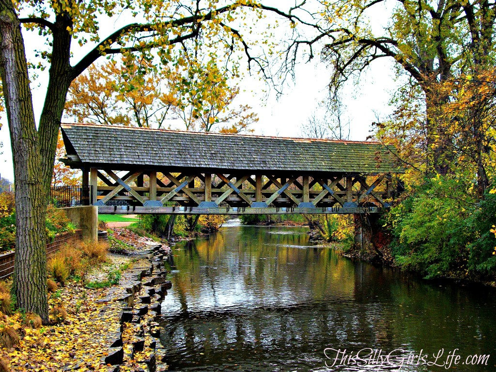 Naperville, IL ThisSillyGirlsLife.com