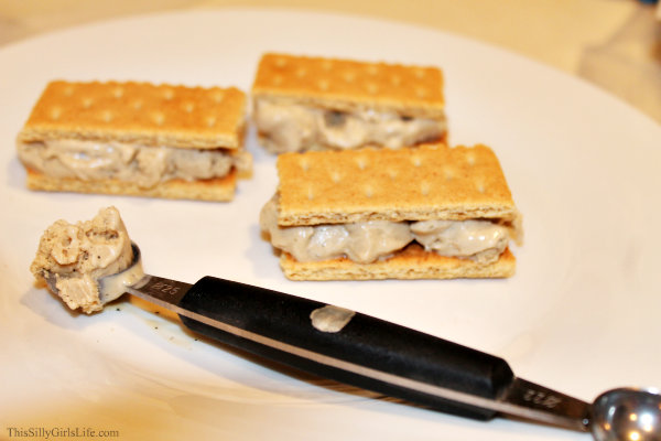 Frozen S'mores with Toasted Marshmallow Ice Cream