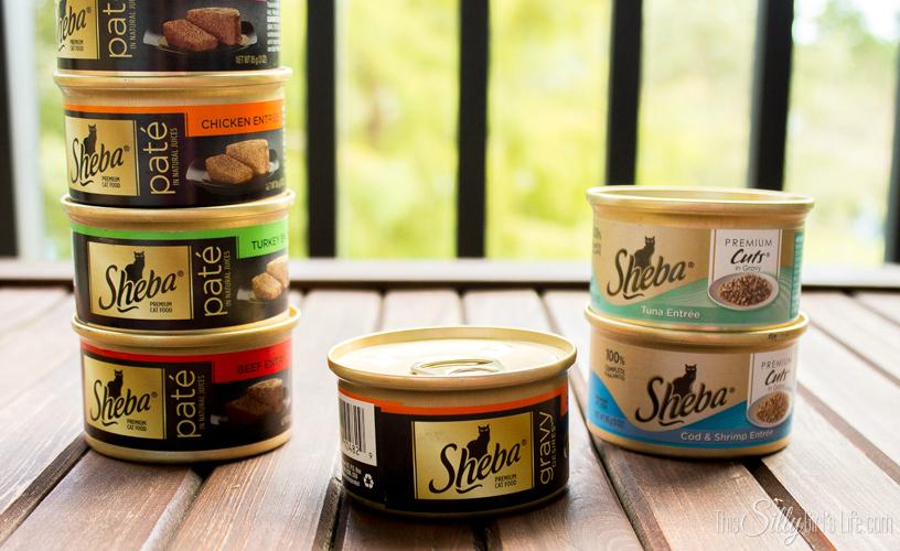 Sheba Cat Food and a Halloween Surprise from Dexter! #Shop #cbias #ShebaCat