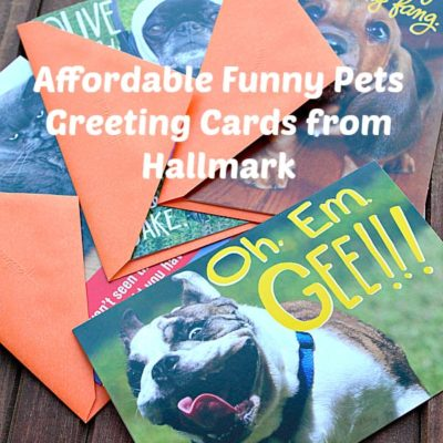 Affordable Funny Pets Greeting Cards from Hallmark