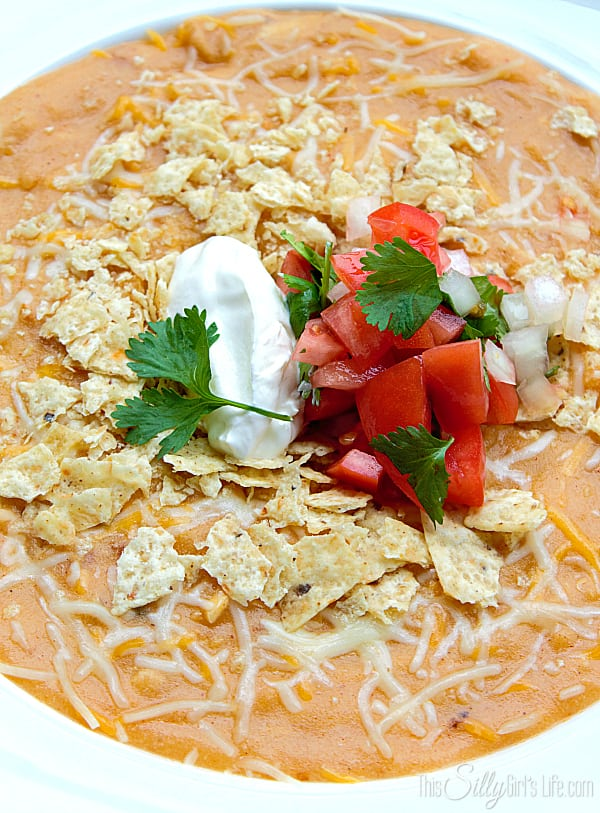 CopyCat Chili's Chicken Enchilada Soup, thick and hearty with big chunks of chicken!