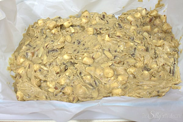Line a 13x9 inch pan with parchment paper or grease well. Evenly spread blondie mix into pan.