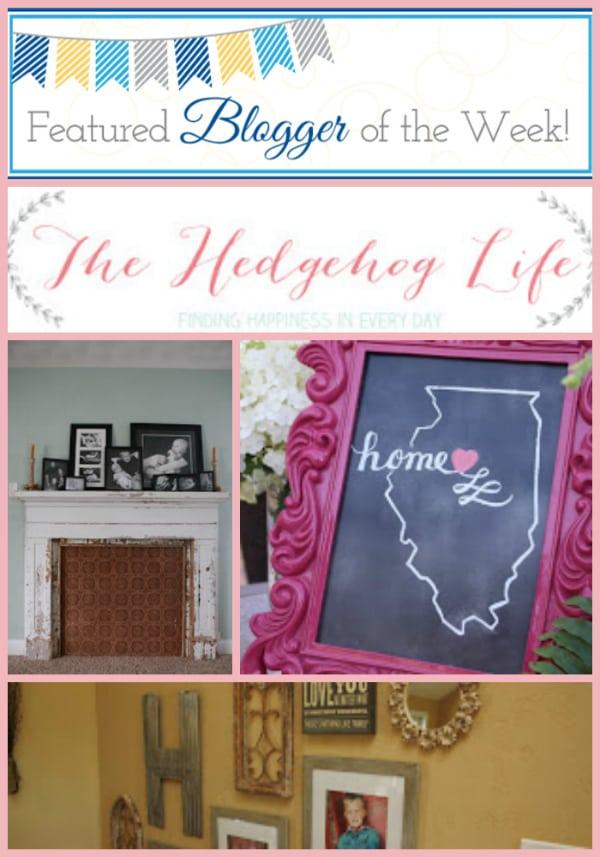 hedgehodge_life