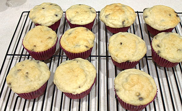 Chocolate Chip Pancakes Cupcakes This Silly Girl S Kitchen