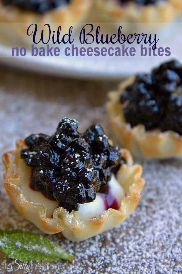 24 No Bake Cheesecake Desserts - Page 2 of 2 - This Silly ...