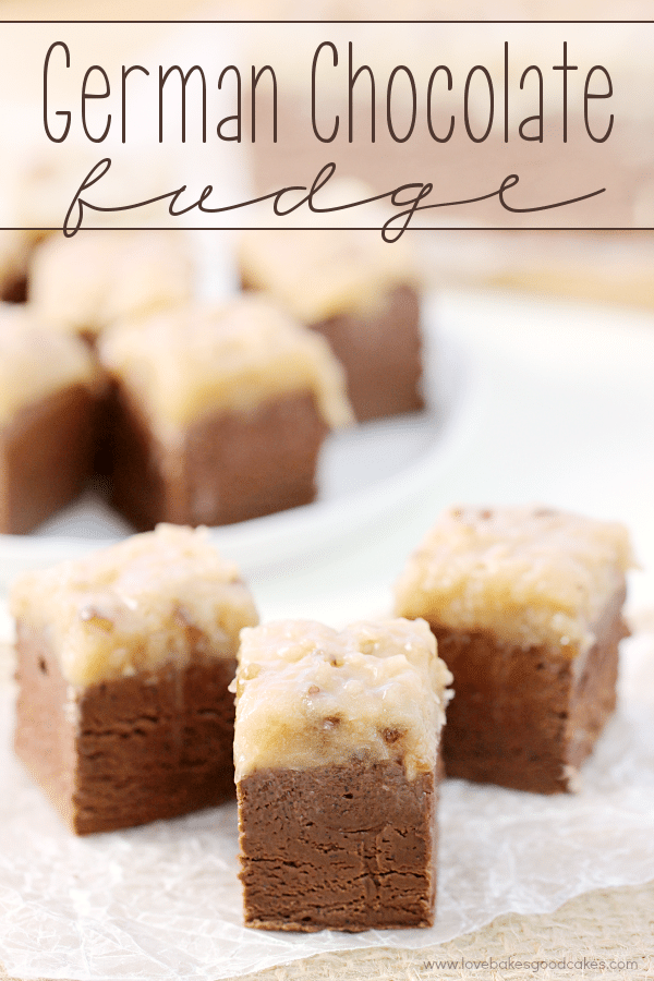 15 Fudge Recipes You Can't Live Without, a collection of easy fudge recipes that will make your life complete. from ThisSillyGirlsLife.com