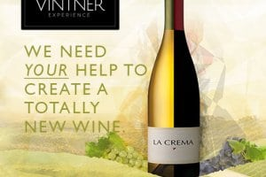 Start Your New Winemaking Journey Today