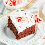 Chocolate Peppermint cake on white plate square image
